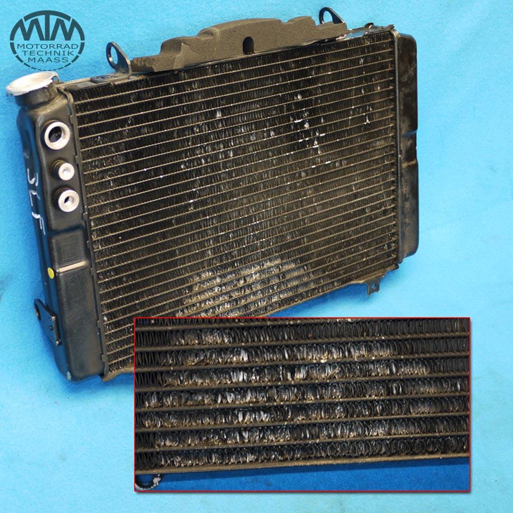 Kühler Yamaha FZR1000 (3LF)