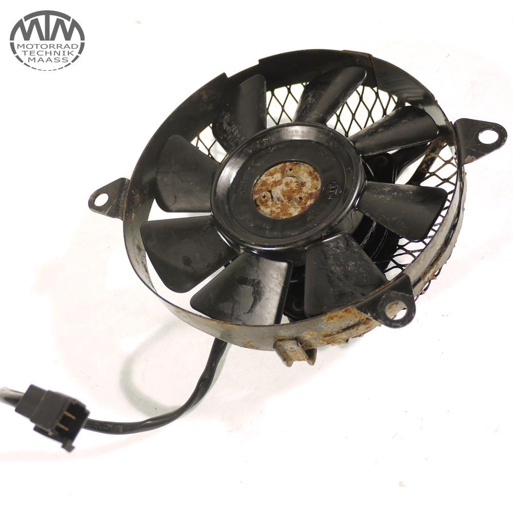 Lüfter Yamaha XTZ 660 Tenere (3YF)