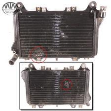 Kühler Kawasaki GPX750R (ZX750F)