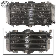 Kühler Yamaha FZR600 Genesis (3RH)