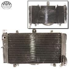 Kühler Honda CBR1000F CBR 1000 F (SC21)