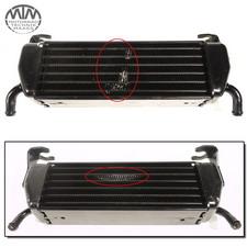 Ölkühler BMW R1100S R 1100 S (WB10)