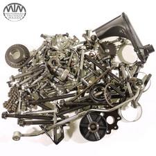 Schrauben & Muttern Motor Triumph TT600 (806AD)