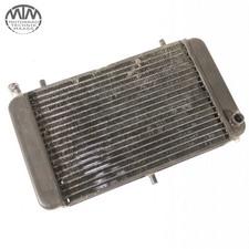 Kühler Aprilia RS125 Replica (MPA)