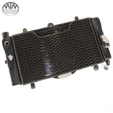 Kühler Honda CBR1000F (SC21)