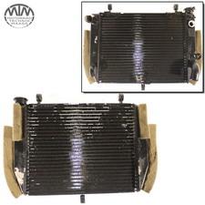 Kühler Yamaha YZF-R6 (RJ03)