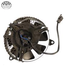 Lüfter Yamaha XTZ660 Tenere (3YF)