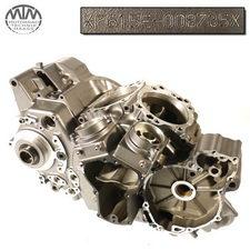 Motorgehäuse Yamaha MT01 (RP12)