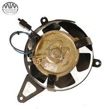 Lüfter Yamaha YZF600R Thundercat (4TV)