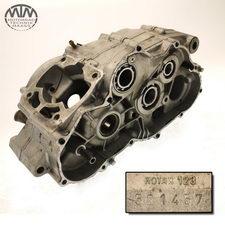 Motorgehäuse Aprilia AF1 Futura (FM)
