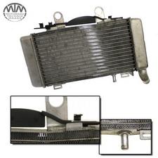 Kühler links Honda VFR800 FI (RC46)
