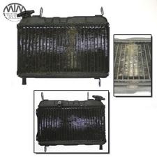 Kühler Yamaha TZR125 (4FL)