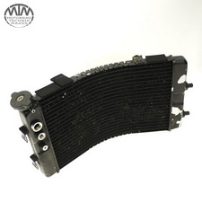 Kühler Yamaha GTS1000 (4BH)