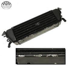 Ölkühler BMW R1100RT (259)