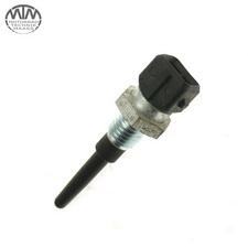 Sensor IAT BMW R850R (R11R)