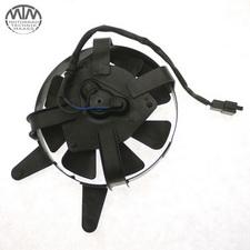 Lüfter Yamaha FZS600 Fazer (RJ02)