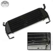 Ölkühler BMW R1100S (R2S)