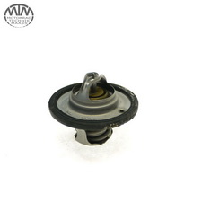 Thermostat Triumph Street Triple 675 (D67LD)