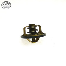 Thermostat Yamaha YZF750R (4HN)