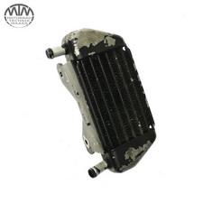Ölkühler links BMW R1100R (259)