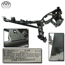 Rahmen, US Title & Messprotokoll Yamaha FZ6R / XJ6F