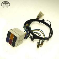 Kontrollleuchten Aprilia Pegaso 650 (ML)