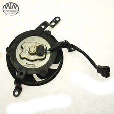 Lüfter links Yamaha YZF-R1 (RN12)