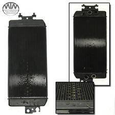 Kühler Suzuki VZ800 / M800 Intruder (WVB4)