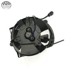 Lüfter Suzuki VZ800 / M800 Intruder (WVB4)