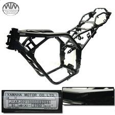 Rahmen, Fahrzeugbrief, Schein &Messprotokoll Yamaha FZS600 Fazer(RJ02)