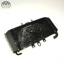 Kühler Yamaha FZS600 Fazer (RJ02)