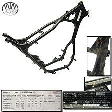 Rahmen, Fahrzeugpapiere & Messprotokoll Suzuki LS650 Savage (NP41B)