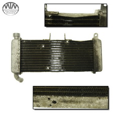 Kühler Aprilia RS4 125 4T (TW)