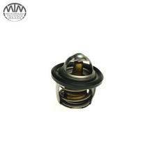 Thermostat BMW G310GS (K02)