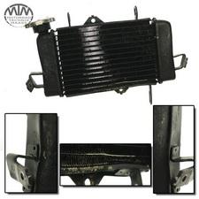 Kühler Yamaha YZF-R125 (RE06)