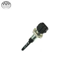 Sensor IAT BMW R1200C (259C)