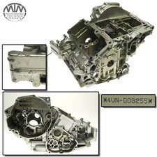 Motorgehäuse Yamaha TRX850 (4UN)