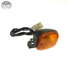 Blinker vorne links BMW F650 (169)