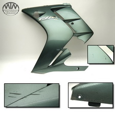 Verkleidung links Yamaha FJR1300 (RP08)