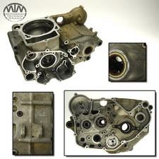 Motorgehäuse Beta RR450 4T