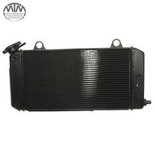Kühler Yamaha XT1200ZA Super Tenere (DP01)