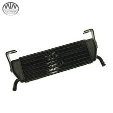 Ölkühler BMW R1100S (259)